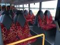nahverkehrsbus10